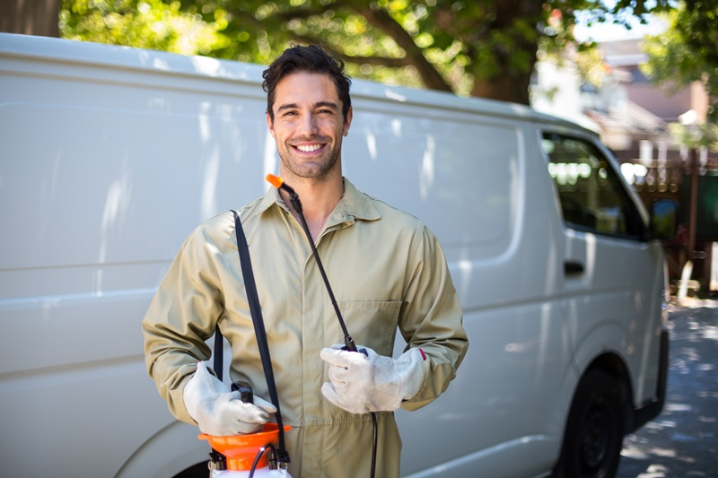 bed bug treatment and inspection service
